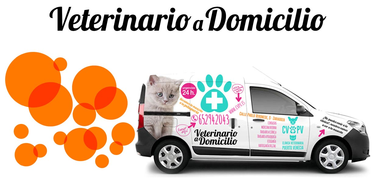 banner_home_veterinario_a_domicilio_2